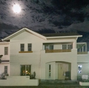 noie moon